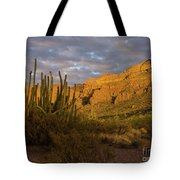 Arch Canyon 3 Tote Bag
