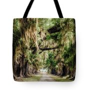 Arch Of Oaks - Evergreen Plantation Tote Bag