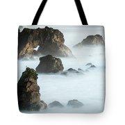 Arched Rock Sea Bird Tote Bag