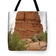 Arches Formation 24 Tote Bag