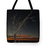 Arches Lone Tree At Dusk Tote Bag