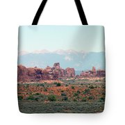 Arches National Park 19 Tote Bag