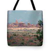 Arches National Park 20 Tote Bag