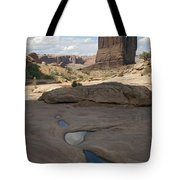 Arches National Park Park Avenue  Tote Bag