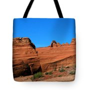 Arches National Park, Utah Usa - Delicate Arch Tote Bag