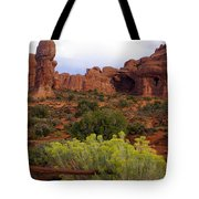 Arches Park 1 Tote Bag