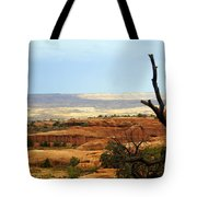 Arches Vista Tote Bag