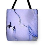 Arctic Fastness  Tote Bag