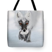 Arctic Fox And Snow Goose Egg Tote Bag