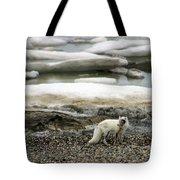 Arctic Fox By Frozen Ocean Tote Bag