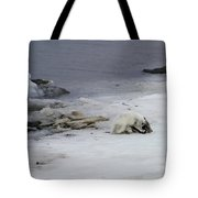 Arctic Fox Eating Tote Bag