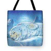 Arctic Seal Tote Bag