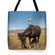 Arctic Tern Attacking Mare Tote Bag