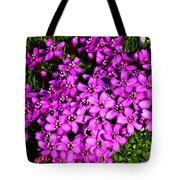 Arctic Wild Flowers Tote Bag