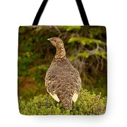 Arctic Willow Ptarmigan Tote Bag