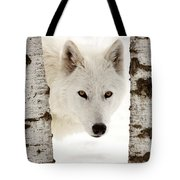 Arctic Wolf Seen Between Two Trees In Winter Tote Bag