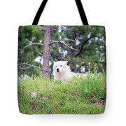 Arctive Wolf Lying Down Tote Bag