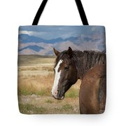 Are You Coming? Tote Bag by Nicole Markmann Nelson