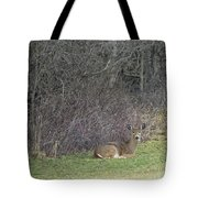Are You Friend Or Foe Tote Bag
