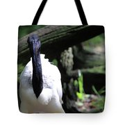 Are You Here To See Me Tote Bag