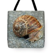 Are You Looking At Me Tote Bag