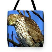 Are You Talkin' To Me? Tote Bag