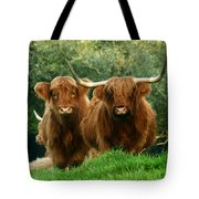 Are You Talking To Us Tote Bag