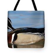 Aren't I Handsome? Tote Bag