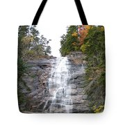 Arethusa Falls 1 Tote Bag