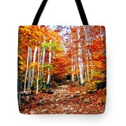 Arethusa Falls Trail Tote Bag by Greg Fortier