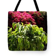 Argonaut Courtyard Tote Bag