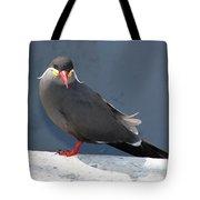 Arica Chile Sea Bird Tote Bag