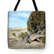 Arid Beauty Tote Bag