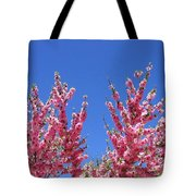 Arizona 3 Tote Bag