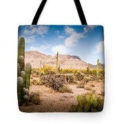 Arizona Desert #3 Tote Bag