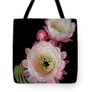 Arizona Desert Cactus Flowers Tote Bag