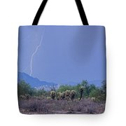 Arizona Desert  Tote Bag