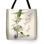 Arizona Hummingbirds Tote Bag