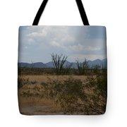 Arizona Rest Stop Tote Bag
