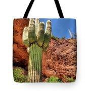 Arizona Saguaro #1 Tote Bag
