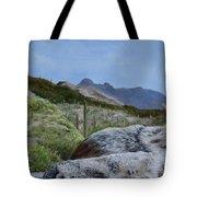 Arizona Sentinel Tote Bag