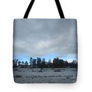 Arizona Winter Landscape Tote Bag