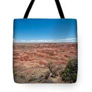 Arizona's Painted Desert Tote Bag