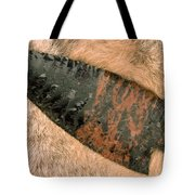 Arrow Point Tote Bag