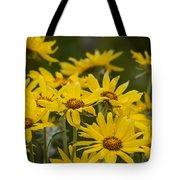 Arrowleaf Balsamroot Bouquet Tote Bag