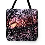 Art Inspired Nature Tote Bag