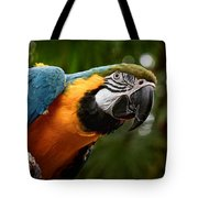 Art Macaw Tote Bag