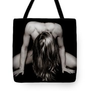 Art Of Woman  Tote Bag