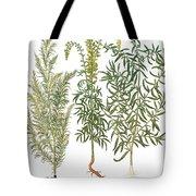 Artemisiae & Reseda Tote Bag