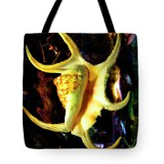 Arthritic Spider Conch Seashell Tote Bag